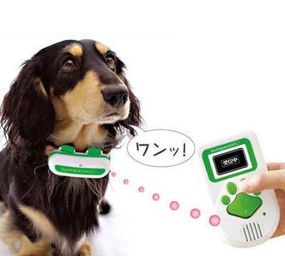 Para entender al perro
