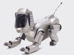 Aibo regresa 2018