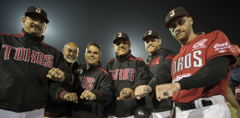Liga Mexicana de Beisbol Twitter Toros