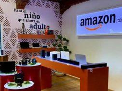 Amazon Holiday House