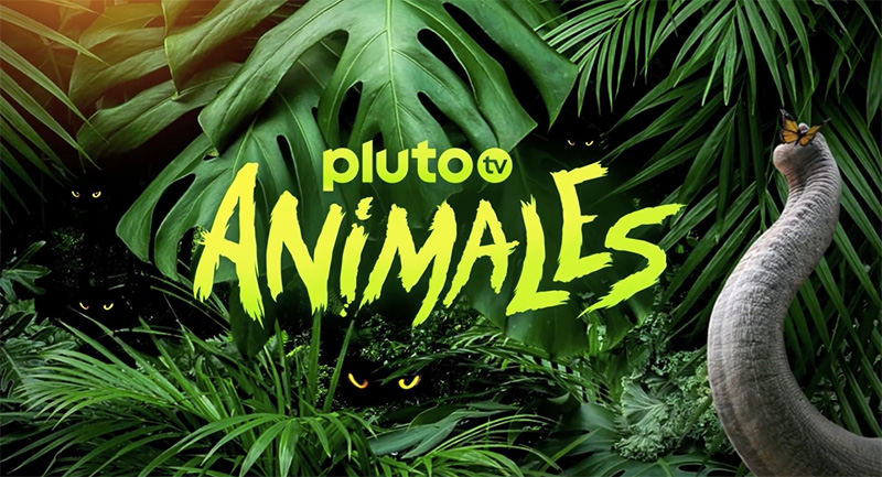 Pluto TV Animales