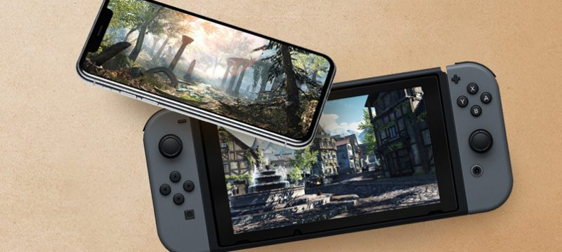 The Elder Scrolls Blades Nintendo Switch