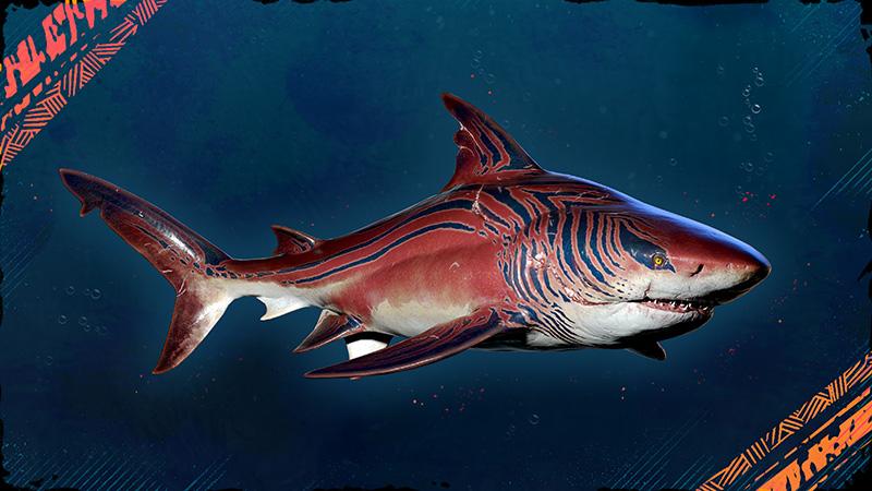 Maneater Tiburon Tigre