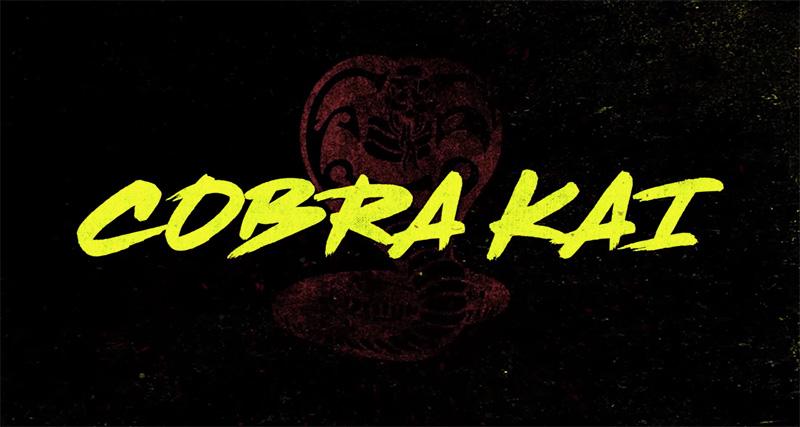 La Temporada 3 de Cobra Kai llegará en enero y habrá una cuarta