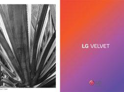LG Velvet Mexico al Amanecer