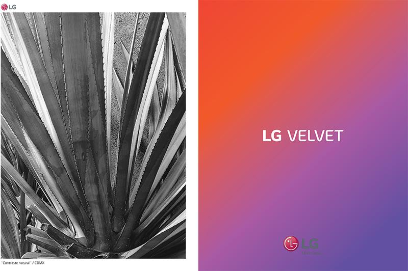 LG Velvet y 14 creadores de contenido muestran México al Amanecer