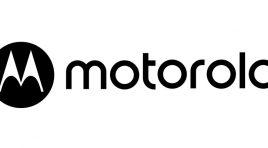 Conoce el nuevo diseño de la tienda en línea de Motorla México