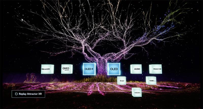 LG CES 2021 Televisores