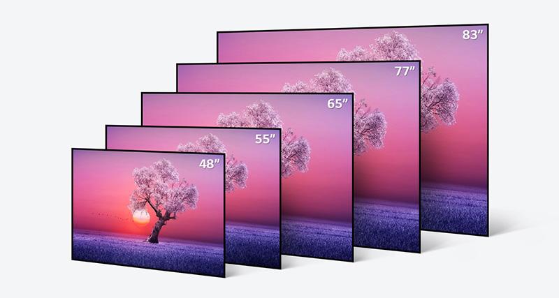 LG OLED 2021 tamanos