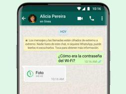 WhatsApp visualizacion unica