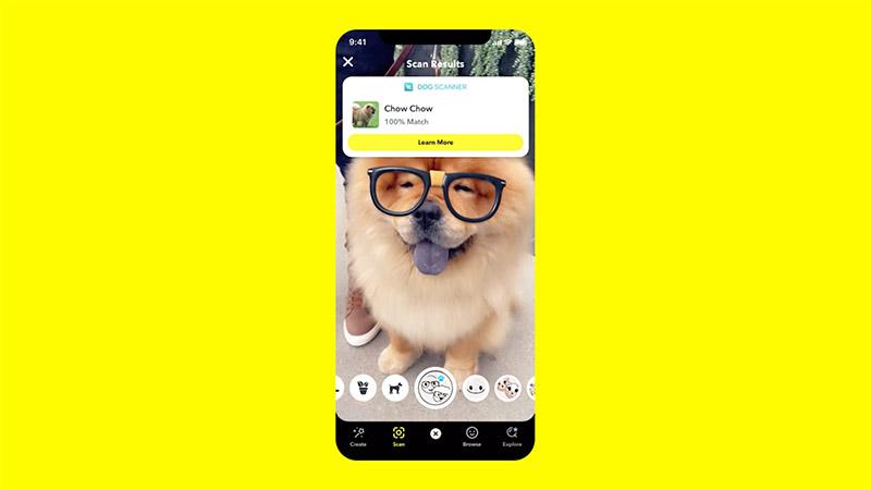 Dog Scanner Snapchat