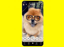 Scan Snapchat perro